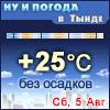 Ну и погода в Тынде - Поминутный прогноз погоды